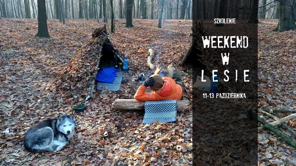 Weekend w lesie