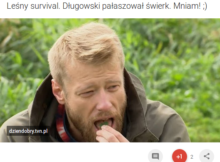 surwiwal, survival, stowarzyszenie