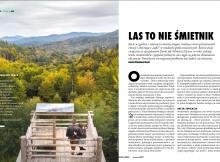 Zanocuj w Lesie - etyka outdoorowa w oparciu o zasady Leave No trace. Stowarzyszenie Polska Szkoła Surwiwalu - surwiwalowcy biwakują w lesie.
