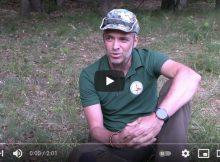 Na nocleg do lasu - nadleśnictwo Kaczory