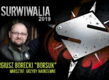 Sergiusz Borecki Borsuk - grzyby nadrzewne