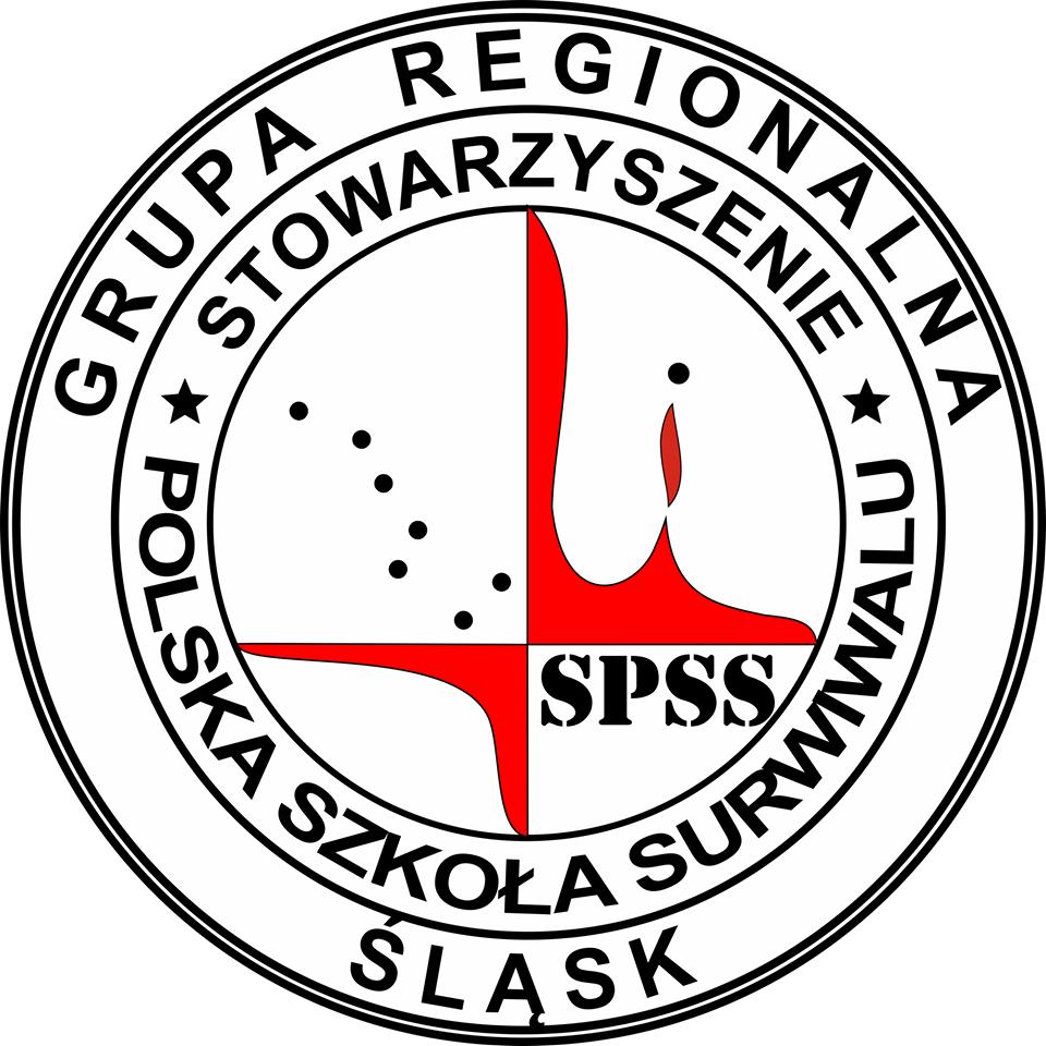Grupa Śląsk