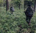 natemat.pl - jak przygotować się na wyjście do lasu?
