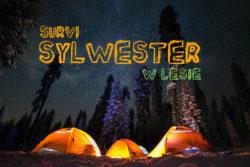 Survi-Sylwester 2019